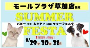 草加店限定!SUMMER FESTA開催予告