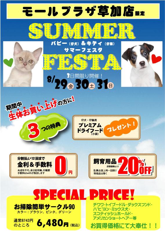 草加店限定!SUMMER FESTA真っ最中!