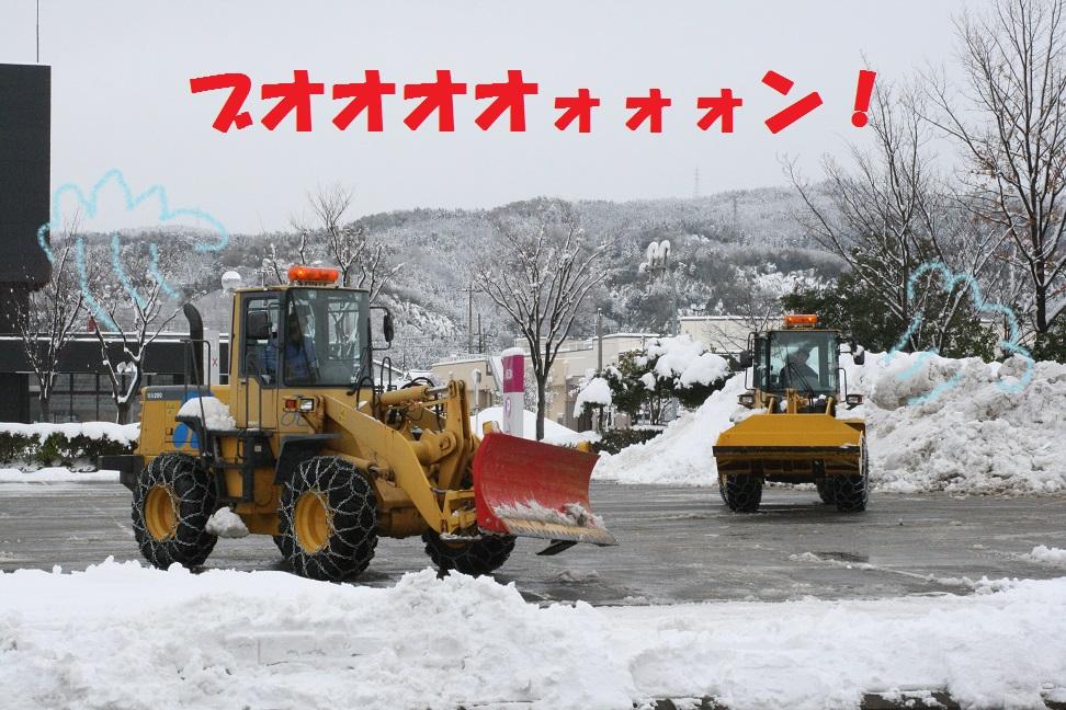 IMG_2773