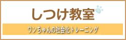 shitsuke_banner