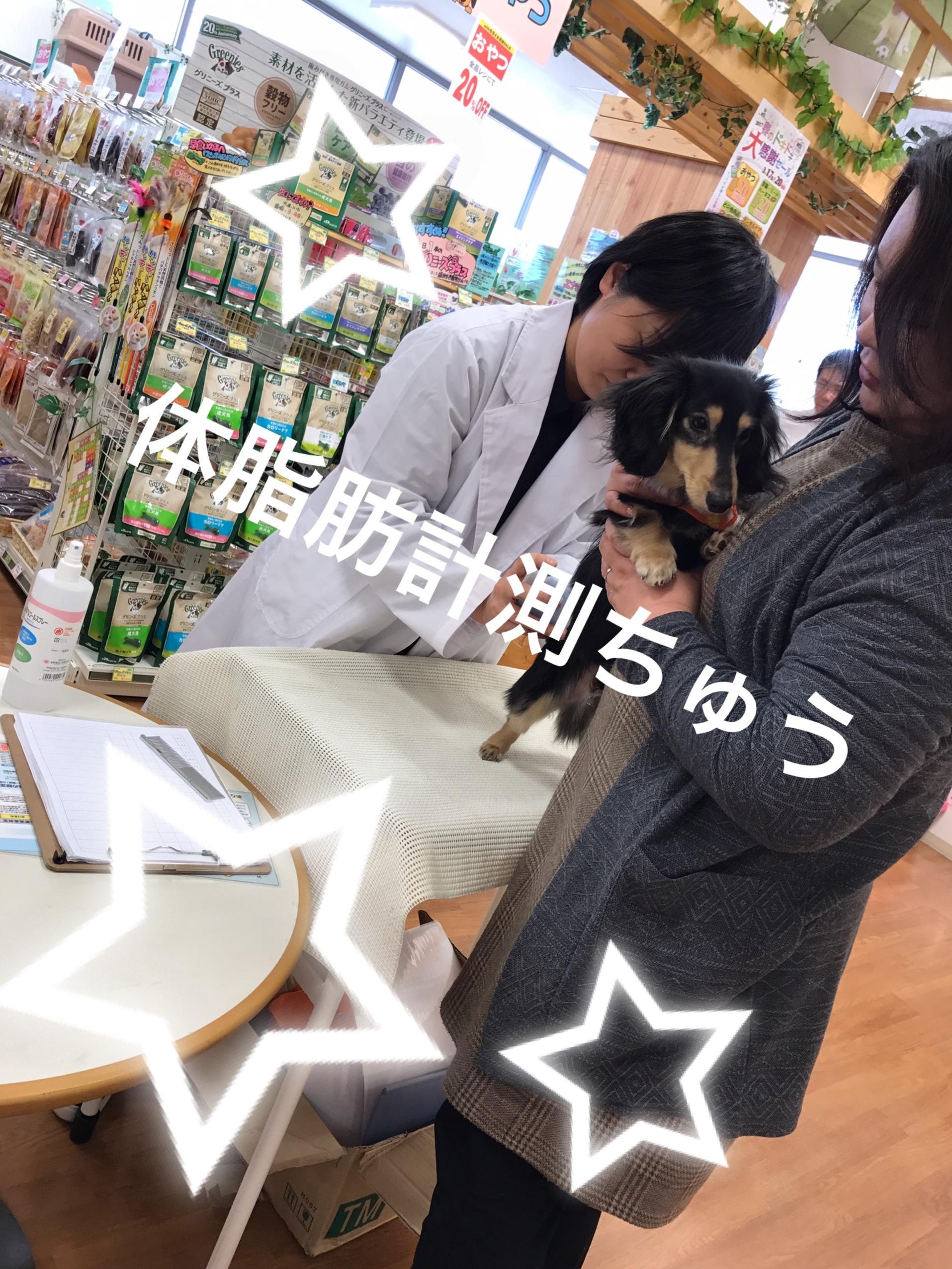 敦賀店イベント\(^o^)/やってますよ~