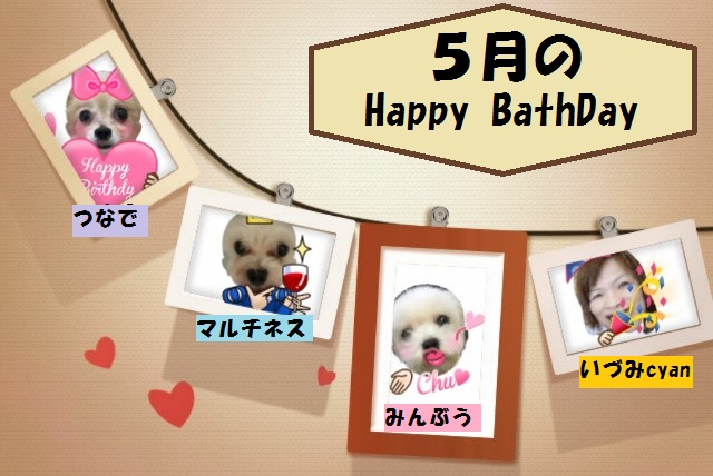 5月の(o゚∀゚)ノ☆゚。+。【祝誕生日】。+。゚☆ヾ(゚∀゚o)