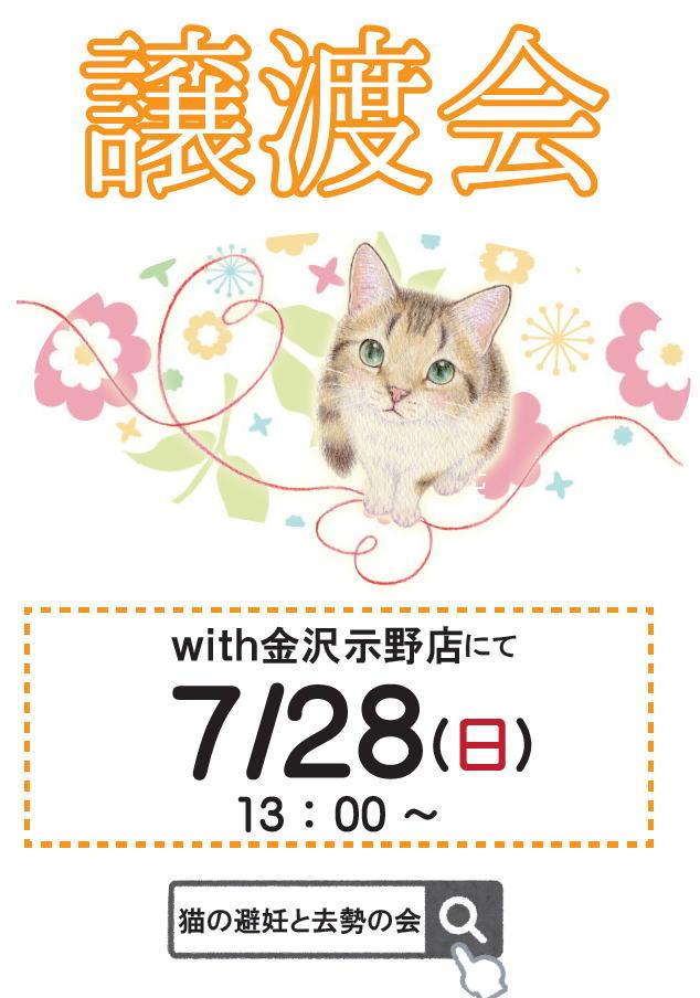 お知らせ*猫の譲渡会