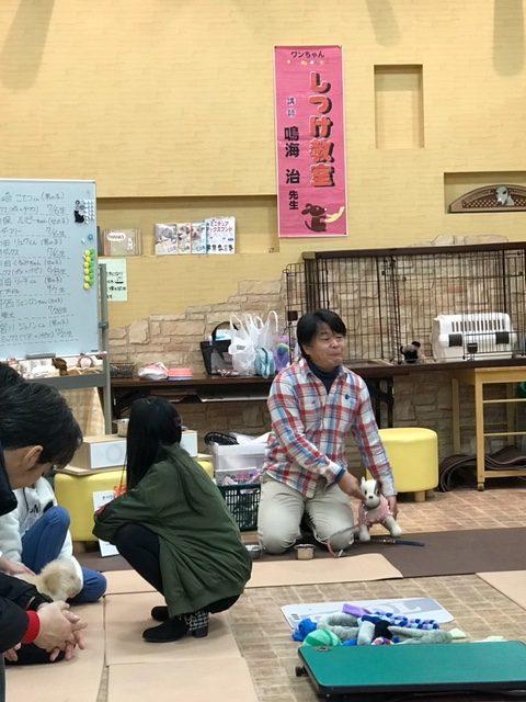 鳴海先生のしつけ教室