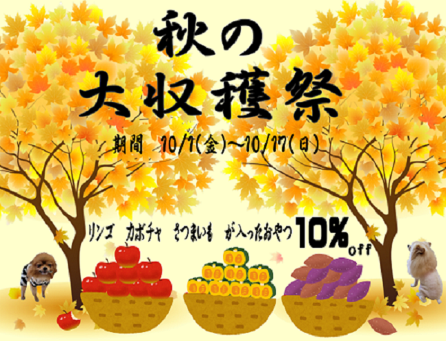 🍎秋の大収穫祭🍎